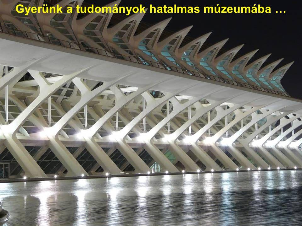 Ne felejtsük el, hogy a víz mindenhol jelen van az egész környéken, így ez alatt a hídív alatt is...