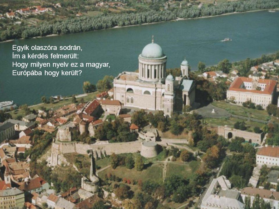 Gyimóthy Gábor: Nyelvlecke (Firenze 1984. X. 12.)