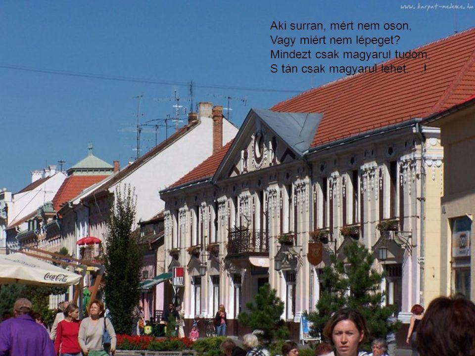 Aki surran, mért nem oson, Vagy miért nem lépeget? Mindezt csak magyarul tudom, S tán csak magyarul lehet...!