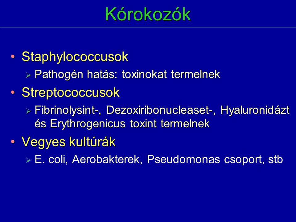 Kórokozók StaphylococcusokStaphylococcusok  Pathogén hatás: toxinokat termelnek StreptococcusokStreptococcusok  Fibrinolysint-, Dezoxiribonucleaset-