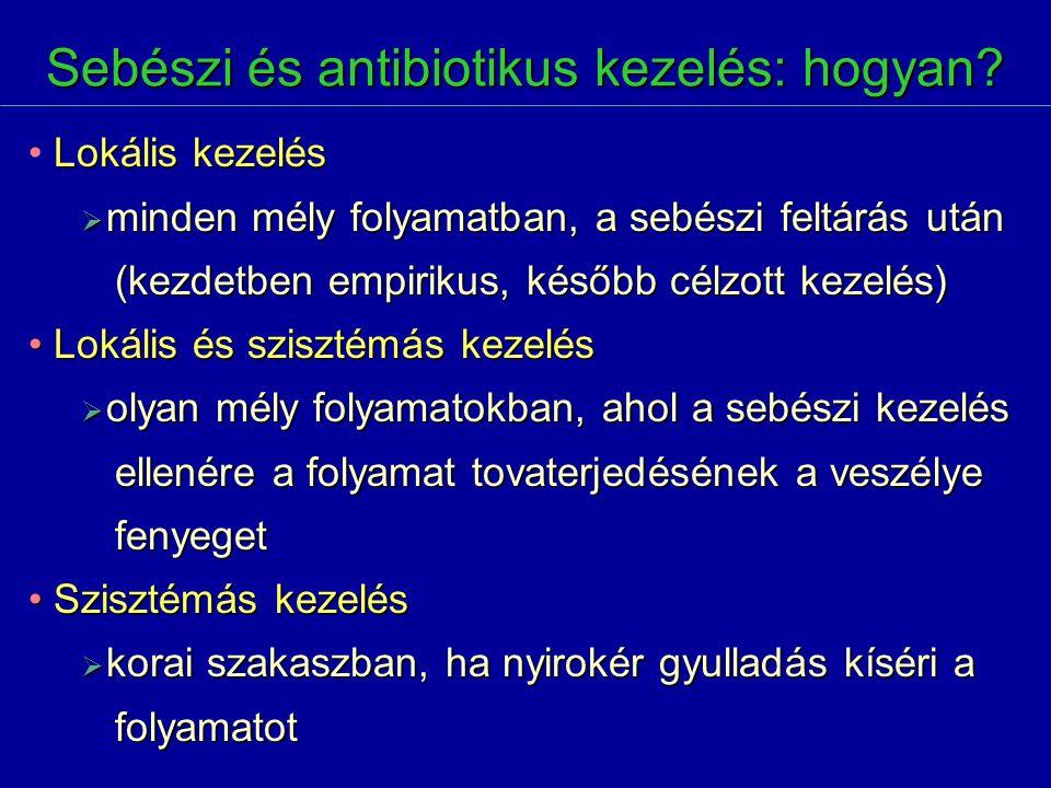 Sebészi és antibiotikus kezelés: hogyan? Lokális kezelés  minden mély folyamatban, a sebészi feltárás után (kezdetben empirikus, később célzott kezel