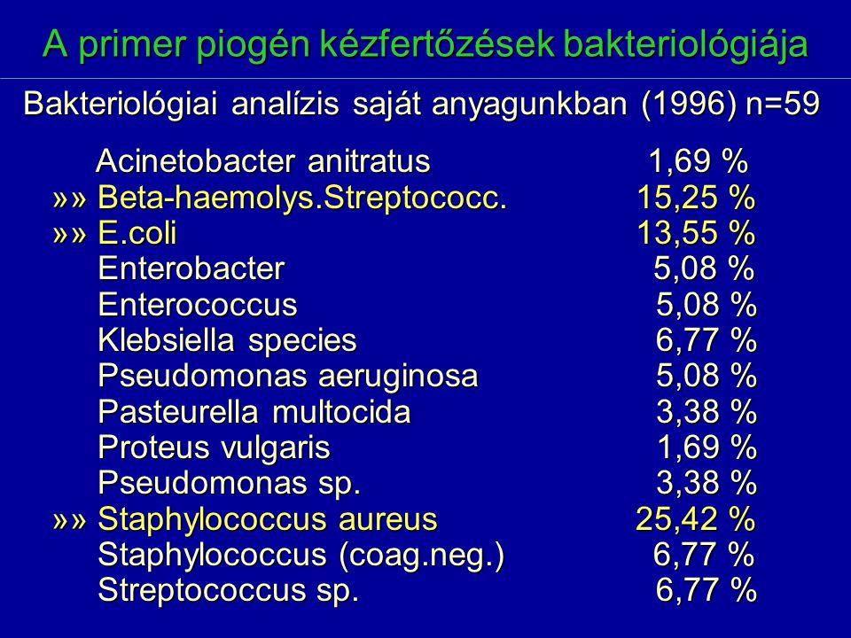 A primer piogén kézfertőzések bakteriológiája Acinetobacter anitratus1,69 % Acinetobacter anitratus1,69 % »» Beta-haemolys.Streptococc. 15,25 % »» E.c