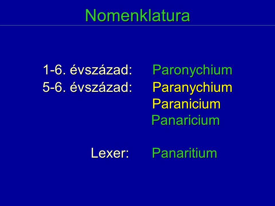 Nomenklatura 1-6. évszázad:Paronychium 5-6. évszázad:Paranychium Paranicium Paranicium Panaricium Panaricium Lexer: Panaritium Lexer: Panaritium