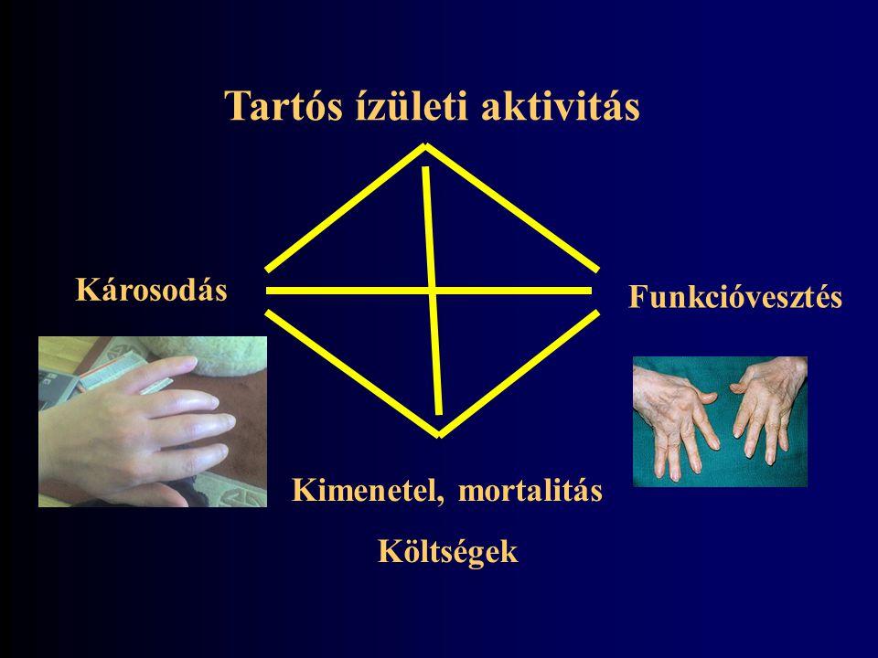 Genetika (HLA-DR) ACPA antitestek Környezet (dohányzás, alkohol?) Az 'igazi Bermuda háromszög