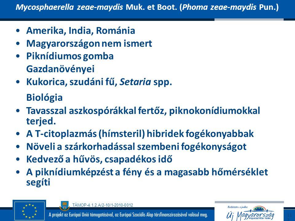 TÁMOP-4.1.2.A/2-10/1-2010-0012 Amerika, India, Románia Magyarországon nem ismert Piknídiumos gomba Gazdanövényei Kukorica, szudáni fű, Setaria spp. Bi