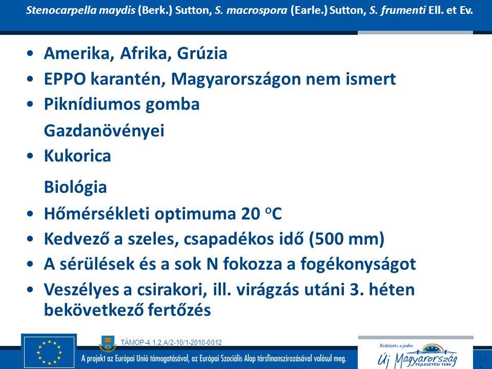 TÁMOP-4.1.2.A/2-10/1-2010-0012 Amerika, Afrika, Grúzia EPPO karantén, Magyarországon nem ismert Piknídiumos gomba Gazdanövényei Kukorica Biológia Hőmé