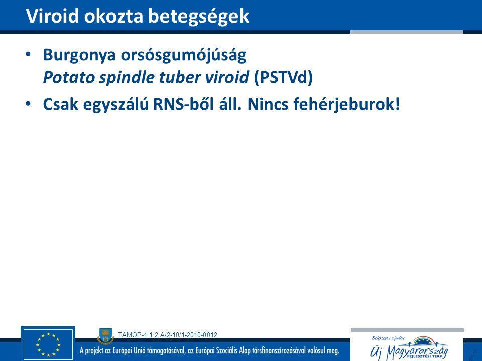 TÁMOP-4.1.2.A/2-10/1-2010-0012 Burgonya orsósgumójúság Potato spindle tuber viroid (PSTVd) Csak egyszálú RNS-ből áll. Nincs fehérjeburok! Viroid okozt