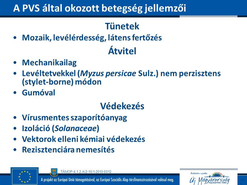 TÁMOP-4.1.2.A/2-10/1-2010-0012 Tünetek Mozaik, levélérdesség, látens fertőzés Átvitel Mechanikailag Levéltetvekkel (Myzus persicae Sulz.) nem perziszt