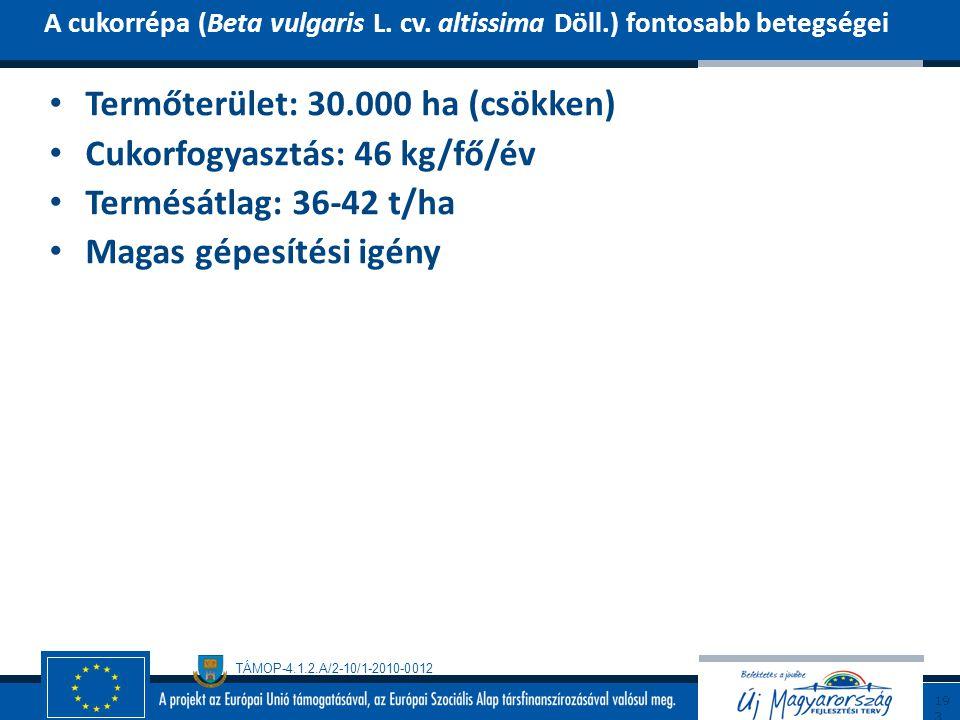 TÁMOP-4.1.2.A/2-10/1-2010-0012 Termőterület: 30.000 ha (csökken) Cukorfogyasztás: 46 kg/fő/év Termésátlag: 36-42 t/ha Magas gépesítési igény A cukorré