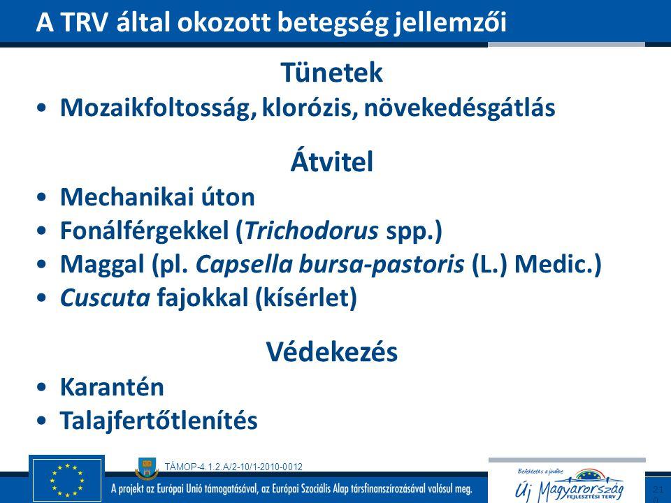 TÁMOP-4.1.2.A/2-10/1-2010-0012 Tünetek Mozaikfoltosság, klorózis, növekedésgátlás Átvitel Mechanikai úton Fonálférgekkel (Trichodorus spp.) Maggal (pl