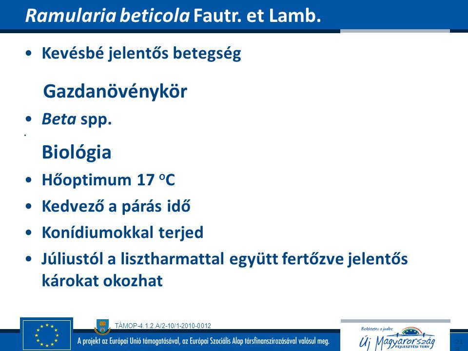 TÁMOP-4.1.2.A/2-10/1-2010-0012 Kevésbé jelentős betegség Gazdanövénykör Beta spp. Biológia Hőoptimum 17 o C Kedvező a párás idő Konídiumokkal terjed J