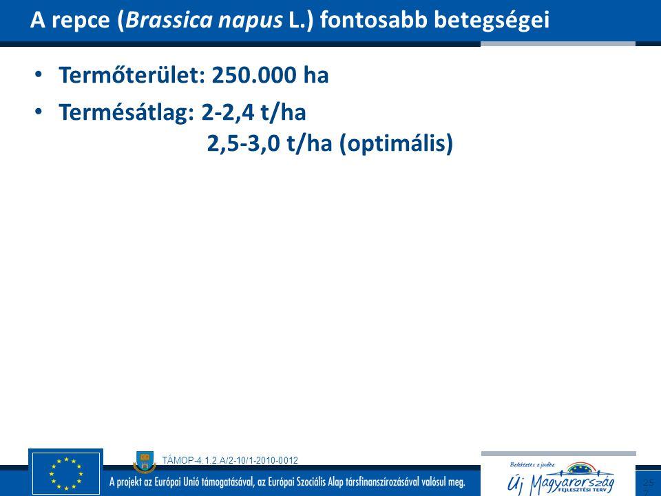 TÁMOP-4.1.2.A/2-10/1-2010-0012 Termőterület: 250.000 ha Termésátlag: 2-2,4 t/ha 2,5-3,0 t/ha (optimális) A repce (Brassica napus L.) fontosabb betegsé