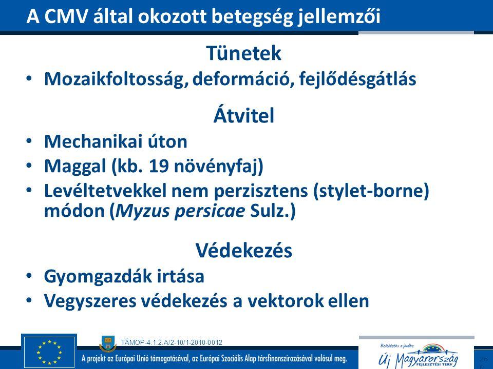 TÁMOP-4.1.2.A/2-10/1-2010-0012 Tünetek Mozaikfoltosság, deformáció, fejlődésgátlás Átvitel Mechanikai úton Maggal (kb. 19 növényfaj) Levéltetvekkel ne