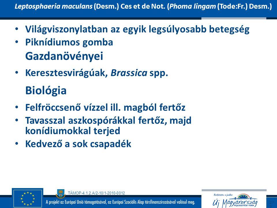 TÁMOP-4.1.2.A/2-10/1-2010-0012 Világviszonylatban az egyik legsúlyosabb betegség Piknídiumos gomba Gazdanövényei Keresztesvirágúak, Brassica spp. Biol