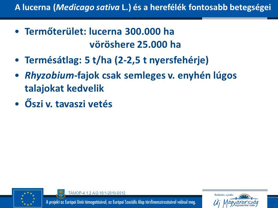 TÁMOP-4.1.2.A/2-10/1-2010-0012 Termőterület: lucerna 300.000 ha vöröshere 25.000 ha Termésátlag: 5 t/ha (2-2,5 t nyersfehérje) Rhyzobium-fajok csak se