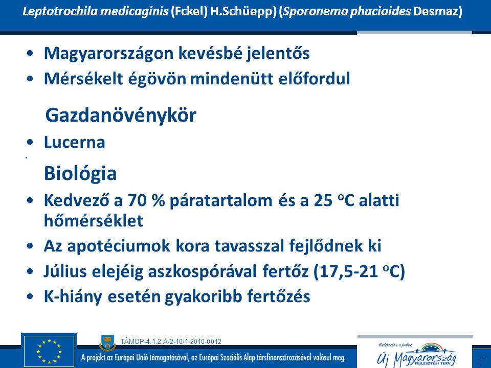 TÁMOP-4.1.2.A/2-10/1-2010-0012 Magyarországon kevésbé jelentős Mérsékelt égövön mindenütt előfordul Gazdanövénykör Lucerna Biológia Kedvező a 70 % pár
