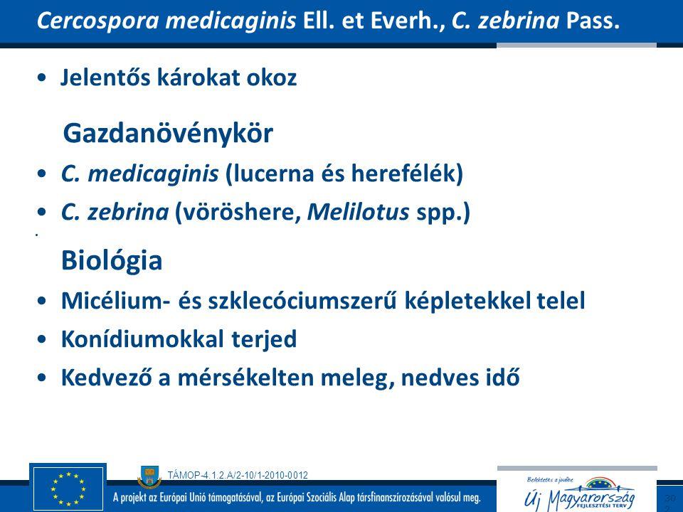 TÁMOP-4.1.2.A/2-10/1-2010-0012 Jelentős károkat okoz Gazdanövénykör C. medicaginis (lucerna és herefélék) C. zebrina (vöröshere, Melilotus spp.) Bioló