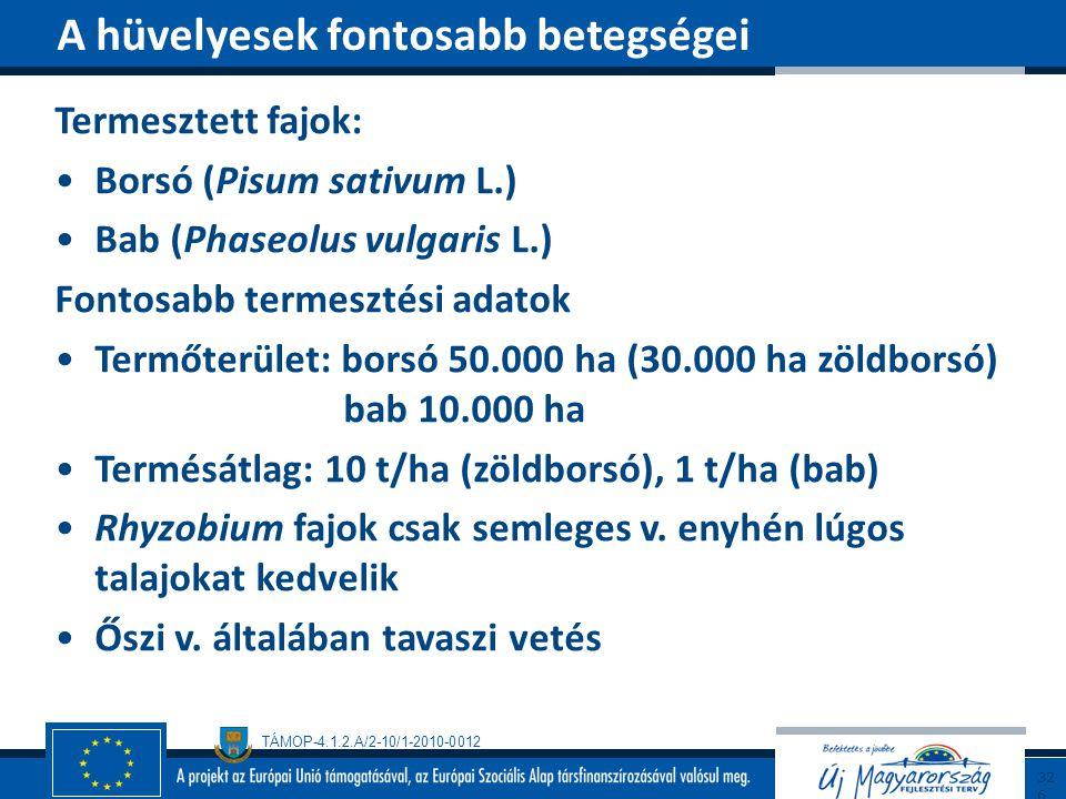 TÁMOP-4.1.2.A/2-10/1-2010-0012 Termesztett fajok: Borsó (Pisum sativum L.) Bab (Phaseolus vulgaris L.) Fontosabb termesztési adatok Termőterület: bors