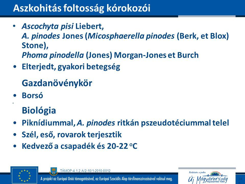 TÁMOP-4.1.2.A/2-10/1-2010-0012 Ascochyta pisi Liebert, A. pinodes Jones (Micosphaerella pinodes (Berk, et Blox) Stone), Phoma pinodella (Jones) Morgan