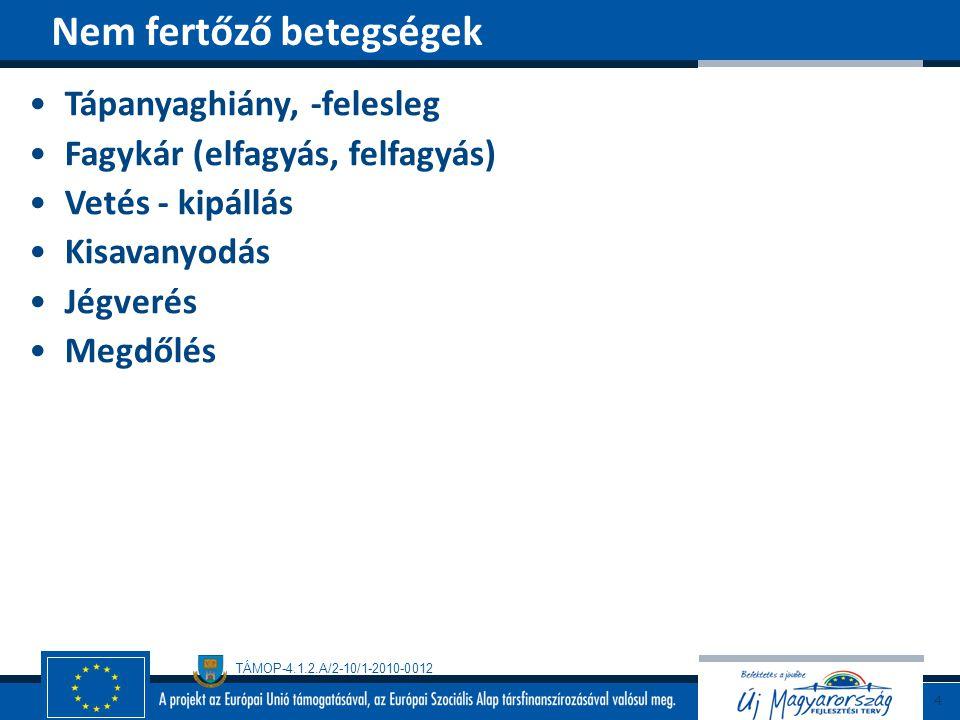 TÁMOP-4.1.2.A/2-10/1-2010-0012 Tünetek Mozaik, sárgás, gyűrűs foltok A szemképződés elmaradhat (fogékony fajta) Átvitel Talajlakó gombákkal (Polymyxa graminis Ledingham) Védekezés Rezisztenciára nemesítés Az őszi vetés nem kívánatos Magyarországon nem ismert Az OMV által okozott betegség jellemzői 25