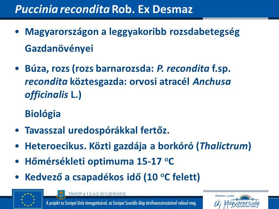 TÁMOP-4.1.2.A/2-10/1-2010-0012 Magyarországon a leggyakoribb rozsdabetegség Gazdanövényei Búza, rozs (rozs barnarozsda: P. recondita f.sp. recondita k