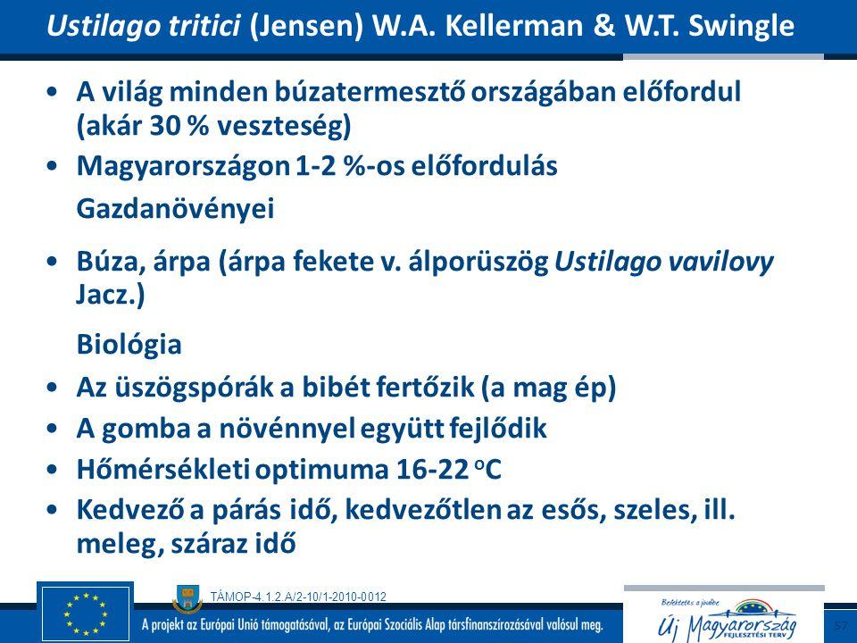 TÁMOP-4.1.2.A/2-10/1-2010-0012 A világ minden búzatermesztő országában előfordul (akár 30 % veszteség) Magyarországon 1-2 %-os előfordulás Gazdanövény