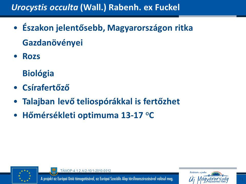 TÁMOP-4.1.2.A/2-10/1-2010-0012 Északon jelentősebb, Magyarországon ritka Gazdanövényei Rozs Biológia Csírafertőző Talajban levő teliospórákkal is fert