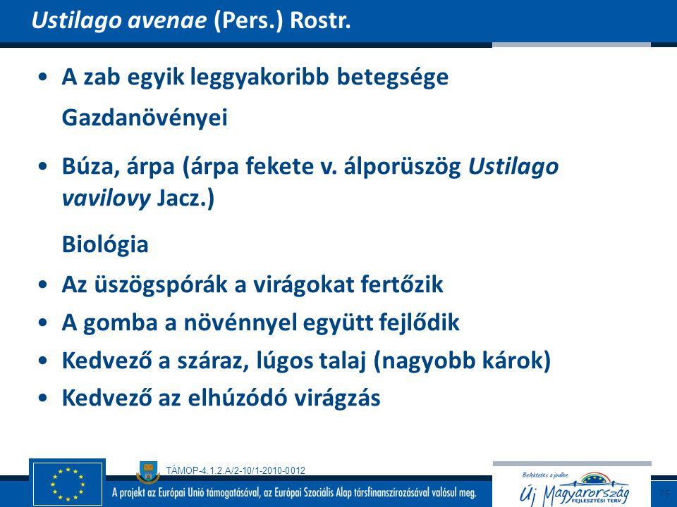 TÁMOP-4.1.2.A/2-10/1-2010-0012 A zab egyik leggyakoribb betegsége Gazdanövényei Búza, árpa (árpa fekete v. álporüszög Ustilago vavilovy Jacz.) Biológi