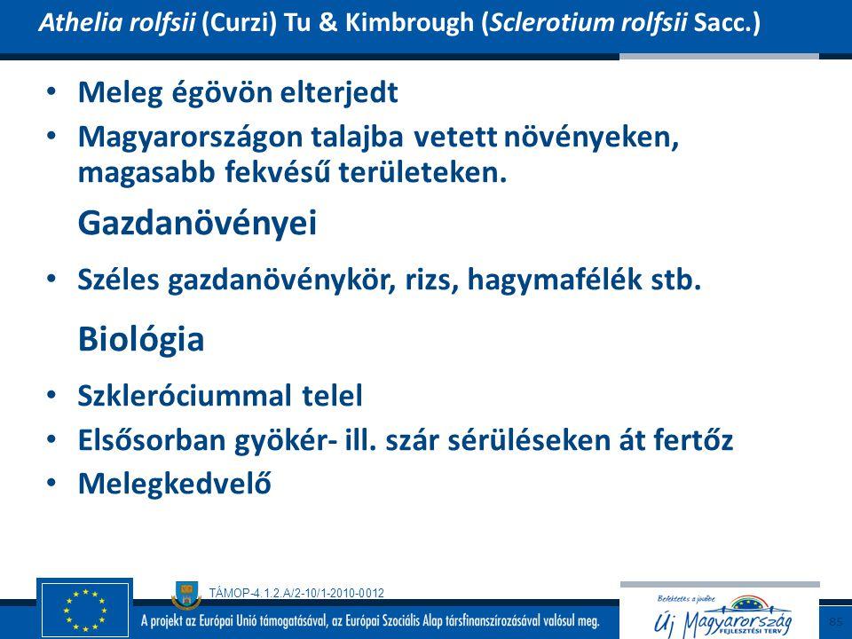 TÁMOP-4.1.2.A/2-10/1-2010-0012 Meleg égövön elterjedt Magyarországon talajba vetett növényeken, magasabb fekvésű területeken. Gazdanövényei Széles gaz