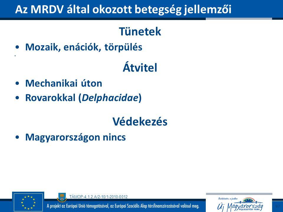 TÁMOP-4.1.2.A/2-10/1-2010-0012 Tünetek Mozaik, enációk, törpülés Átvitel Mechanikai úton Rovarokkal (Delphacidae) Védekezés Magyarországon nincs Az MR