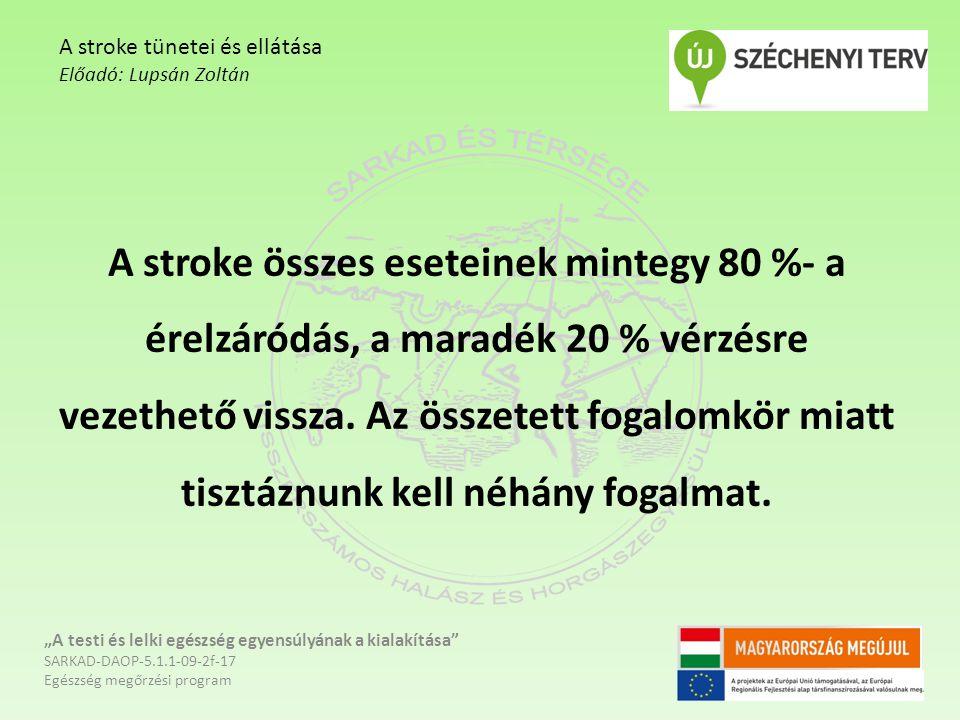 A stroke összes eseteinek mintegy 80 %- a érelzáródás, a maradék 20 % vérzésre vezethető vissza.