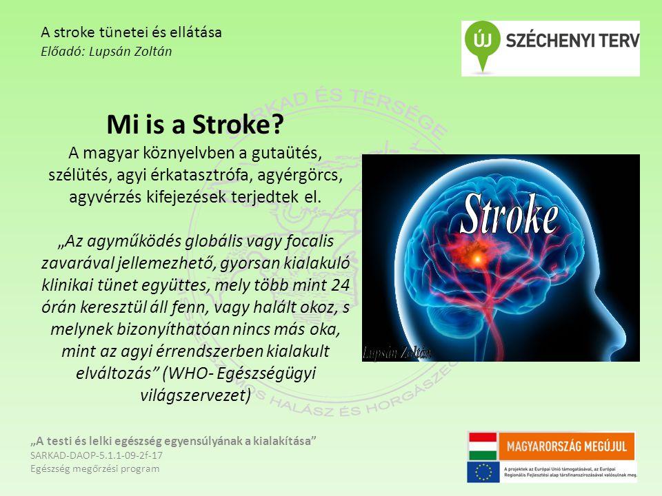 """Mi is a Stroke? A magyar köznyelvben a gutaütés, szélütés, agyi érkatasztrófa, agyérgörcs, agyvérzés kifejezések terjedtek el. """"Az agyműködés globális"""