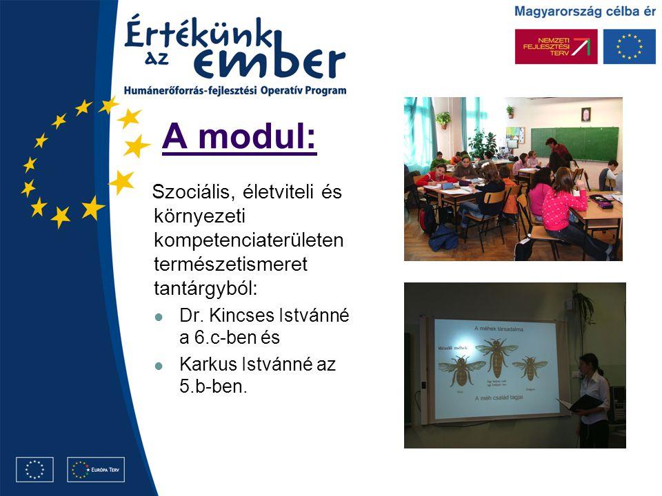 A modul: Szociális, életviteli és környezeti kompetenciaterületen természetismeret tantárgyból: Dr. Kincses Istvánné a 6.c-ben és Karkus Istvánné az 5
