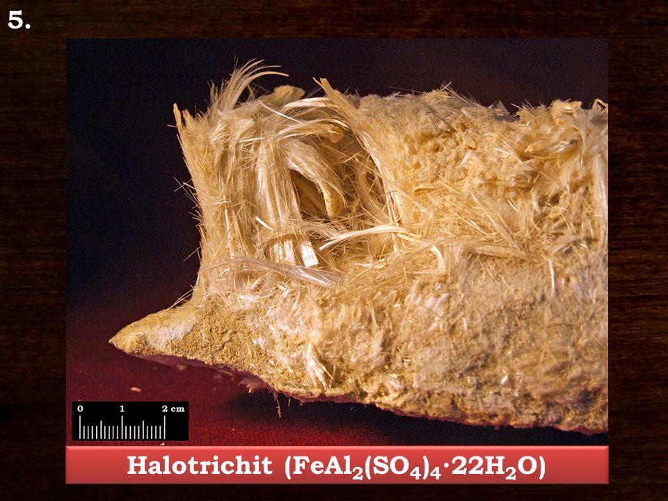 5. Halotrichit (FeAl 2 (SO 4 ) 4 ∙22H 2 O)