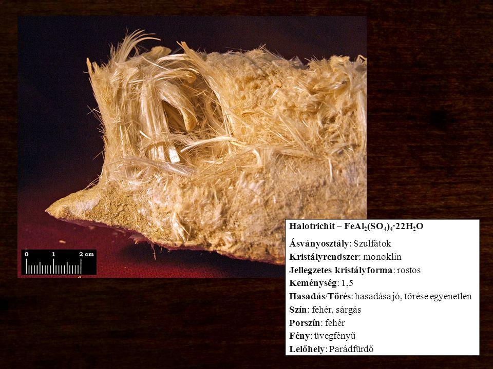 Halotrichit – FeAl 2 (SO 4 ) 4 ∙22H 2 O Ásványosztály: Szulfátok Kristályrendszer: monoklin Jellegzetes kristályforma: rostos Keménység: 1,5 Hasadás/Törés: hasadása jó, törése egyenetlen Szín: fehér, sárgás Porszín: fehér Fény: üvegfényű Lelőhely: Parádfürdő