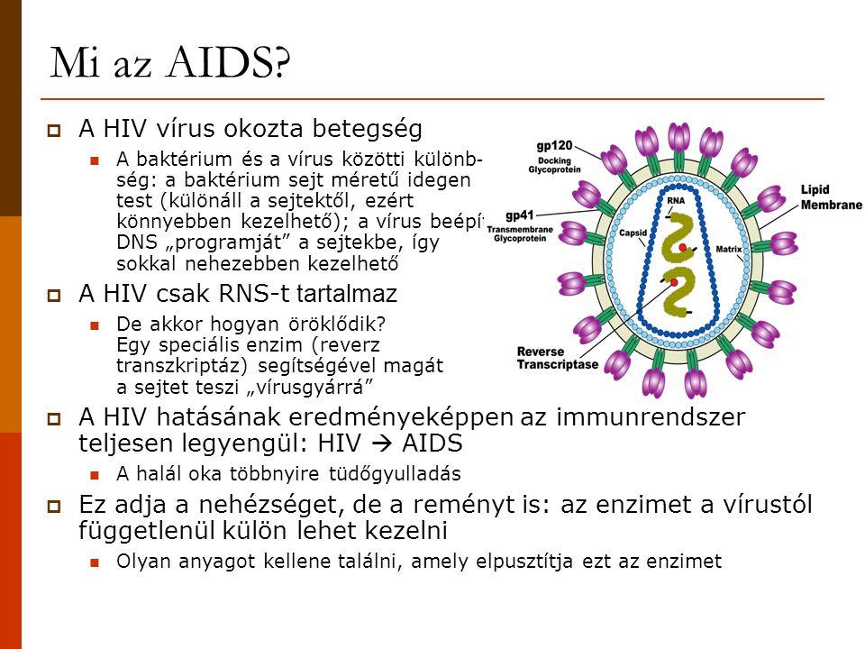 Mi az AIDS?  A HIV vírus okozta betegség A baktérium és a vírus közötti különb - ség: a baktérium sejt méretű idegen test (különáll a sejtektől, ezér