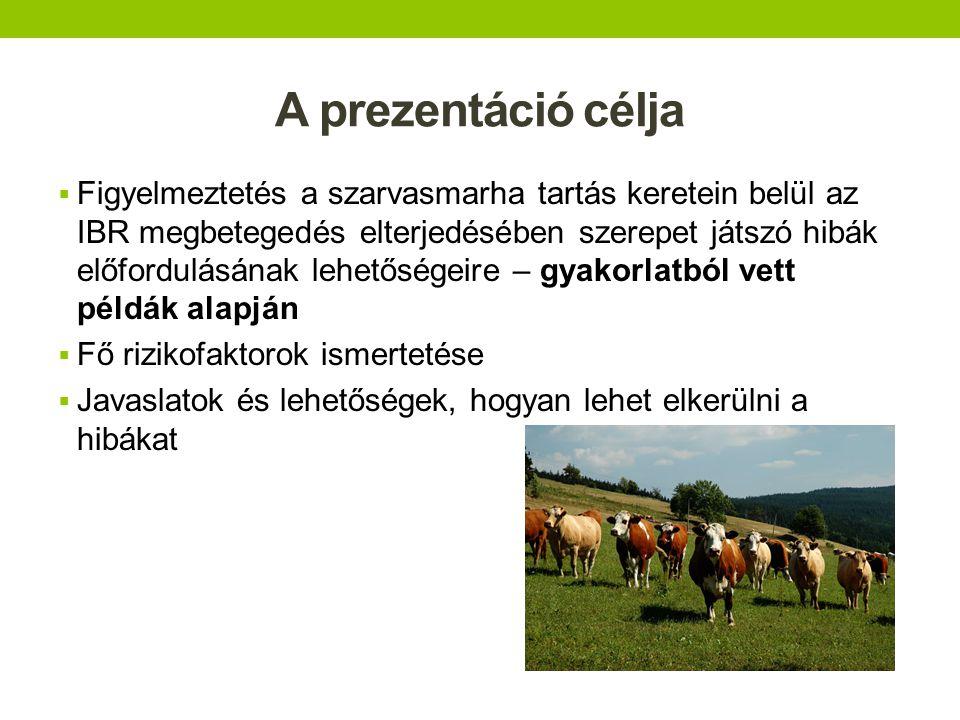A prezentáció célja  Figyelmeztetés a szarvasmarha tartás keretein belül az IBR megbetegedés elterjedésében szerepet játszó hibák előfordulásának leh