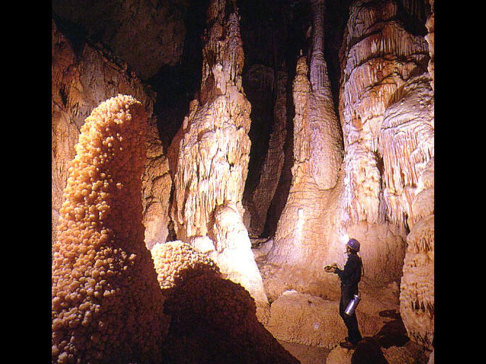 La baza peşterii s-a dezvoltat, pe scară largă, un alt fenomen rar întîlnit pe glob.