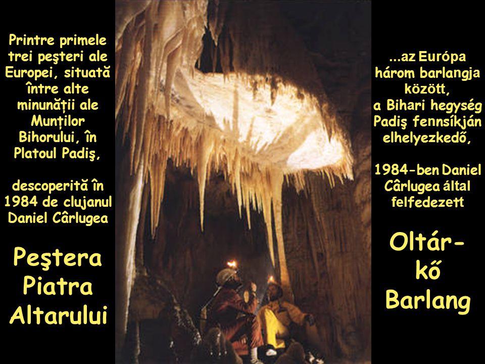 Printre primele trei peşteri ale Europei, situată între alte minunăţii ale Munţilor Bihorului, în Platoul Padiş, descoperită în 1984 de clujanul Daniel Cârlugea Peştera Piatra Altarului...az Európa három barla n g ja között, a Bih a ri hegység Padiş fe n nsíkján elhelyezkedő, 1984-ben Daniel Cârlugea által fel fedez e t t Oltár- kő Barlang