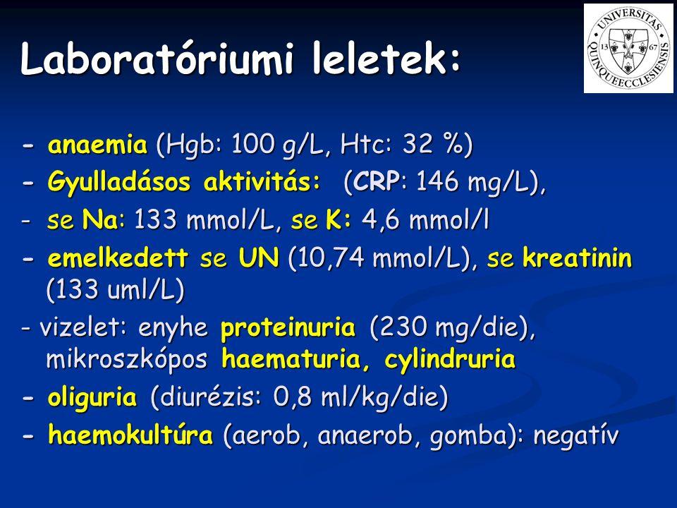 Laboratóriumi leletek: - anaemia (Hgb: 100 g/L, Htc: 32 %) - Gyulladásos aktivitás: (CRP: 146 mg/L), - se Na: 133 mmol/L, se K: 4,6 mmol/l - emelkedet