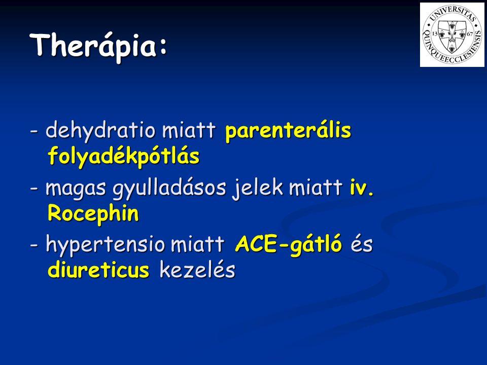 Therápia: - dehydratio miatt parenterális folyadékpótlás - magas gyulladásos jelek miatt iv. Rocephin - hypertensio miatt ACE-gátló és diureticus keze