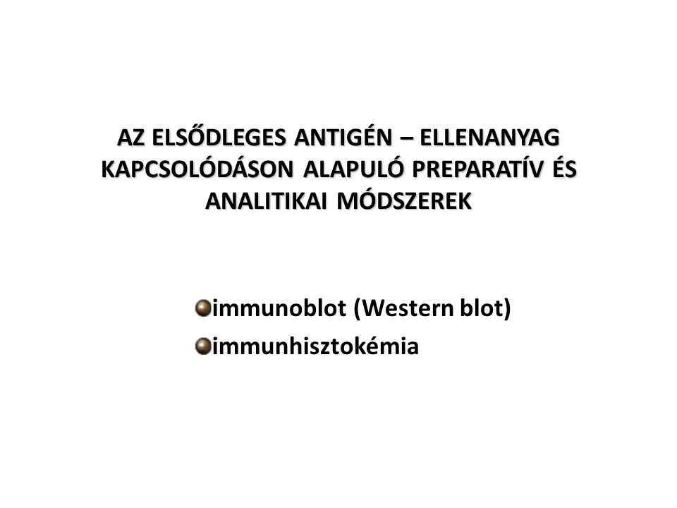 AZ ELSŐDLEGES ANTIGÉN – ELLENANYAG KAPCSOLÓDÁSON ALAPULÓ PREPARATÍV ÉS ANALITIKAI MÓDSZEREK immunoblot (Western blot) immunhisztokémia