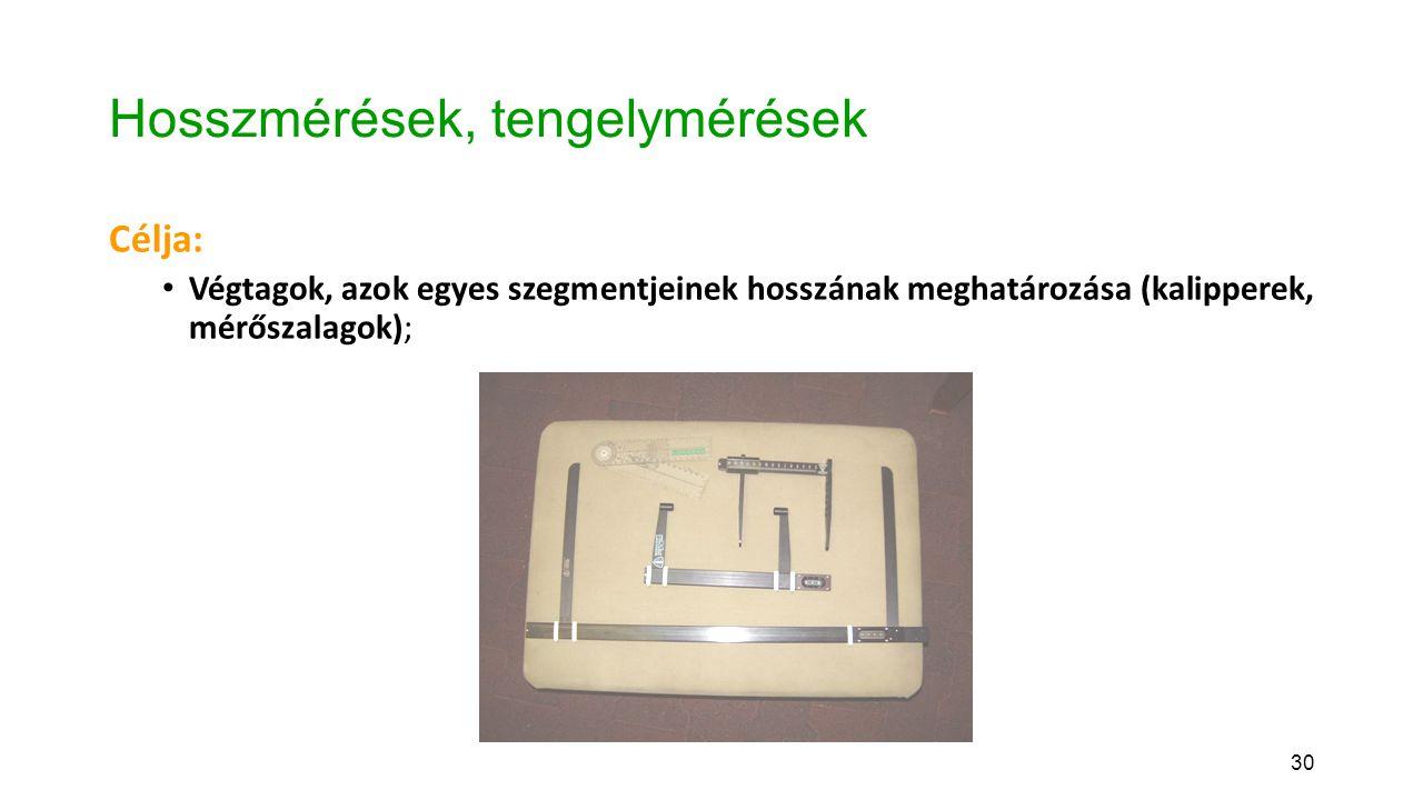 30 Hosszmérések, tengelymérések Célja: Végtagok, azok egyes szegmentjeinek hosszának meghatározása (kalipperek, mérőszalagok);