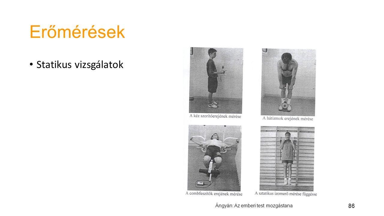 86 Erőmérések Statikus vizsgálatok Ángyán: Az emberi test mozgástana
