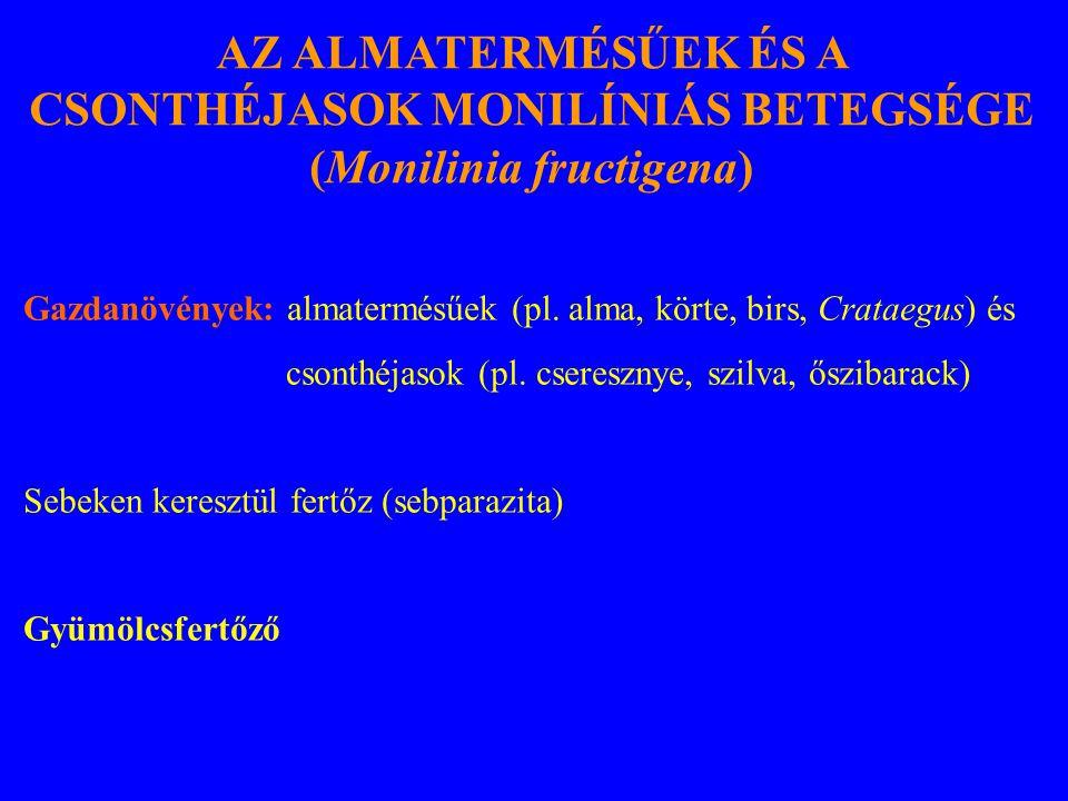 Gazdanövények: almatermésűek (pl.alma, körte, birs, Crataegus) és csonthéjasok (pl.