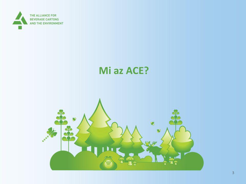Mi az ACE? 3