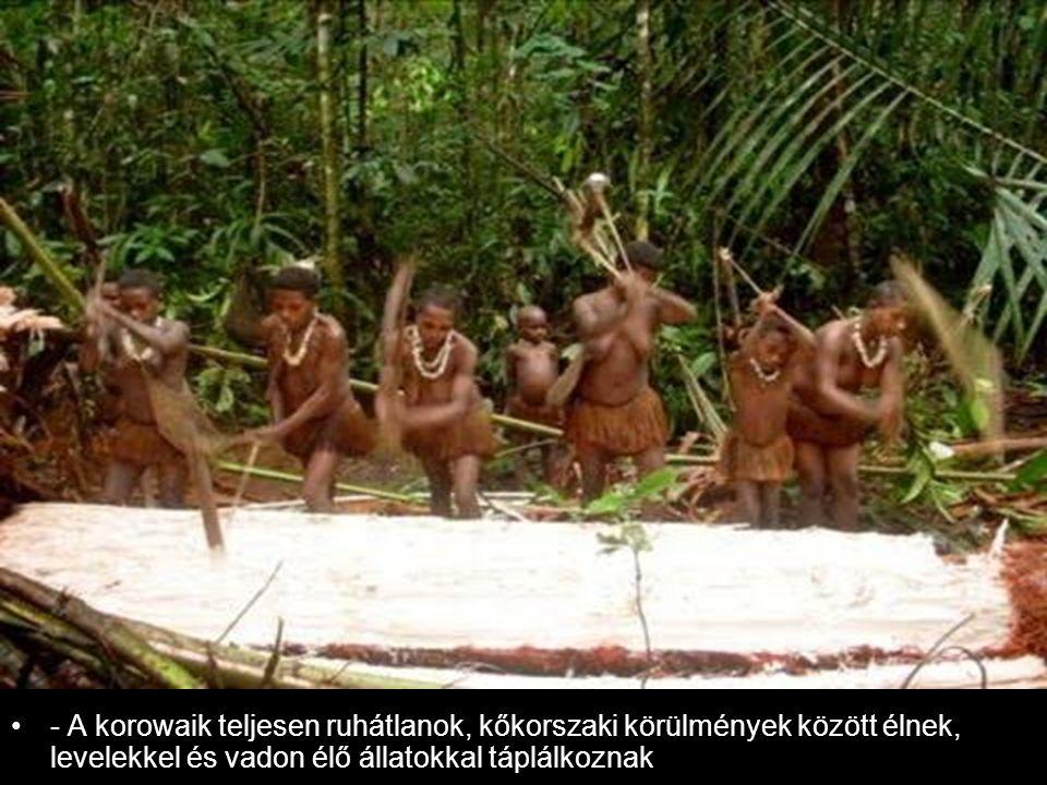 - A korowaik teljesen ruhátlanok, kőkorszaki körülmények között élnek, levelekkel és vadon élő állatokkal táplálkoznak