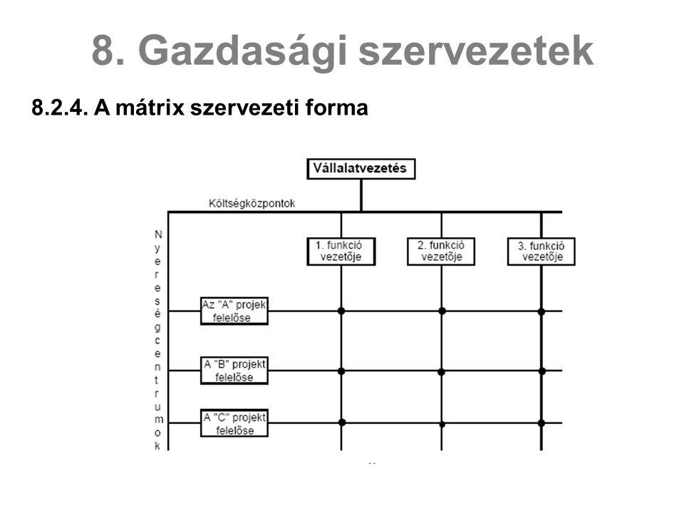 8.2.4. A mátrix szervezeti forma 8. Gazdasági szervezetek