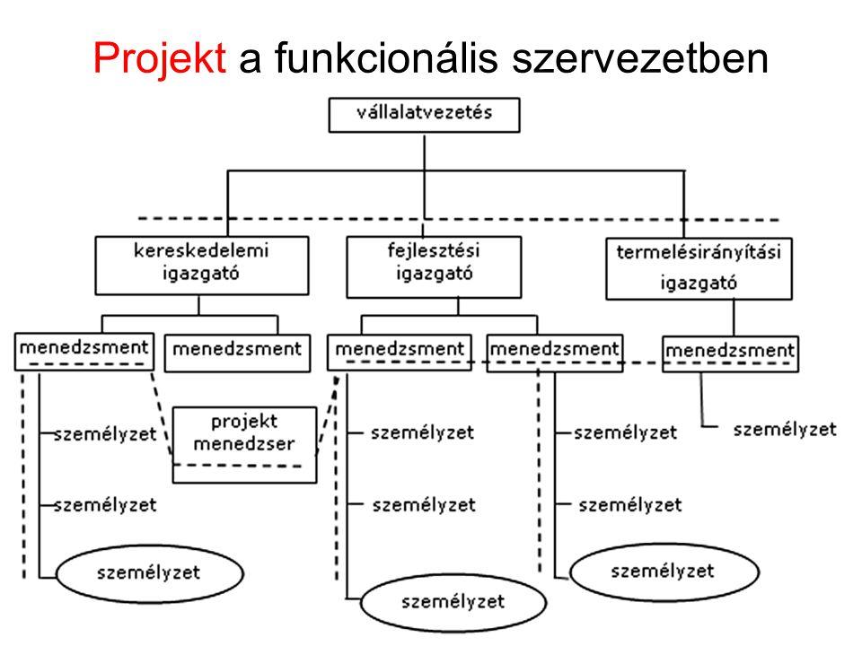 Projekt a funkcionális szervezetben