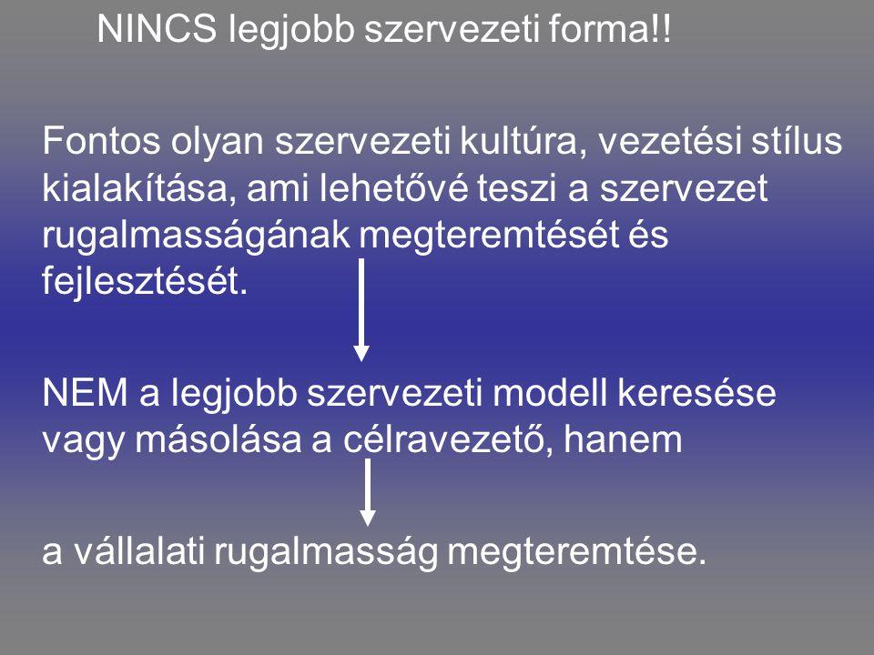 NINCS legjobb szervezeti forma!! Fontos olyan szervezeti kultúra, vezetési stílus kialakítása, ami lehetővé teszi a szervezet rugalmasságának megterem
